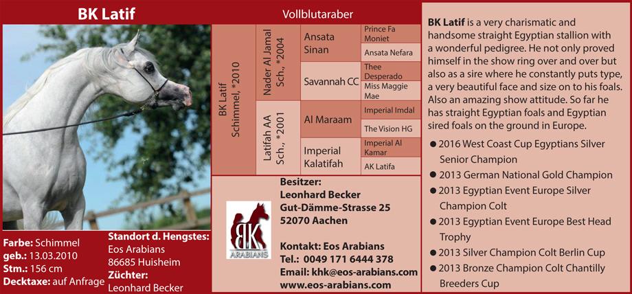 EOS Arabians - BK Latif