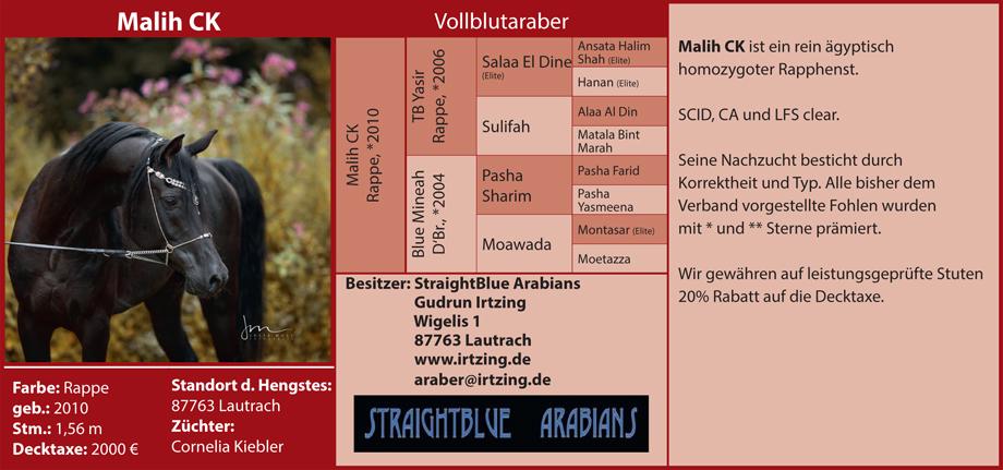 Gudrun Irtzing - Malilh CK