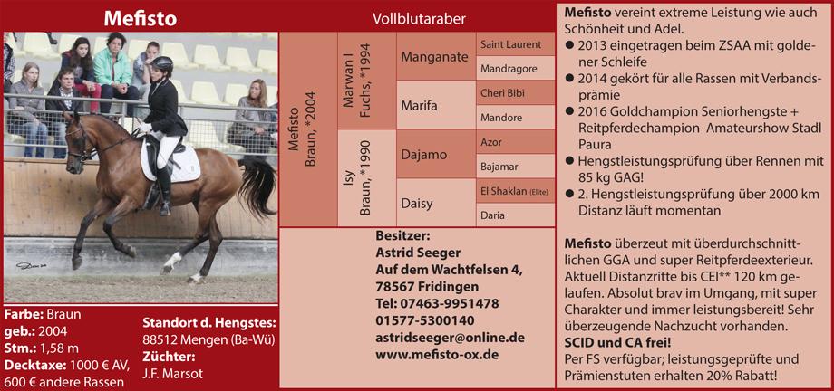 Steffi Kolpin - Mefisto
