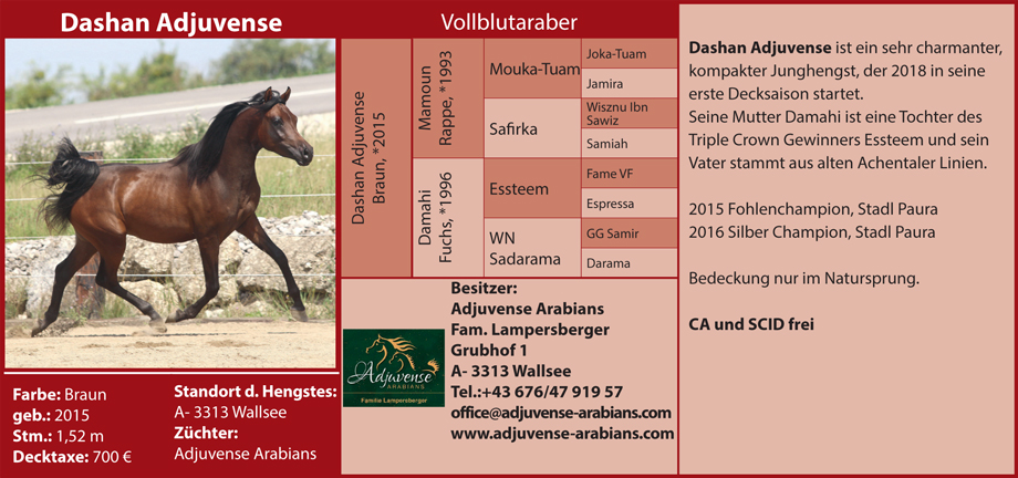Fam. Lampersberger - Adjuvense Arabians
