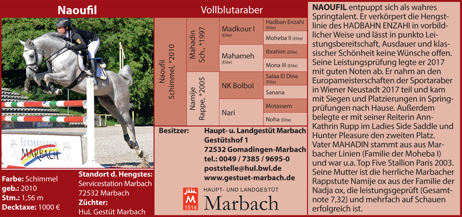 Gestüt Marbach - Naoufil