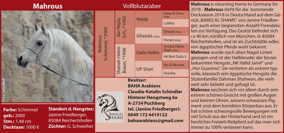 Claudia Schindler - Mahrous