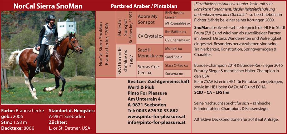 Wert & Piuk - NorCal Sierra SnoMan