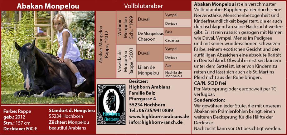 Highborn Arabians - Familie Balz