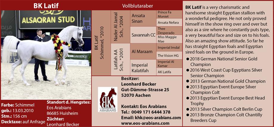 EOS Arabians - Kathrin Hampe