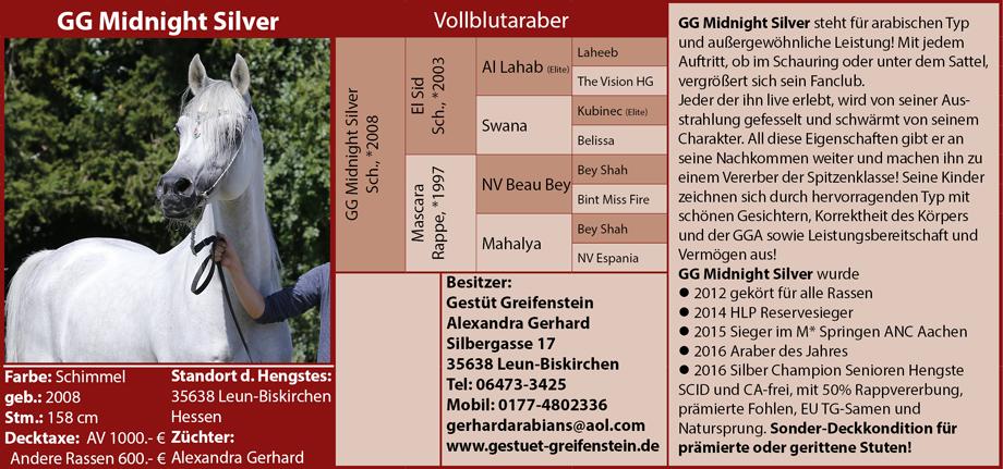 GG Midnight Silver - Alexandra Gerhardt