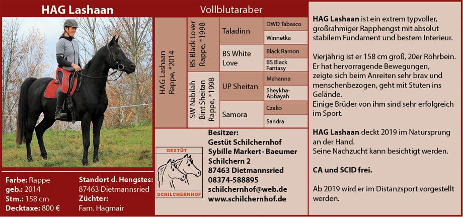 Schilchernhof - HAG Lashaan
