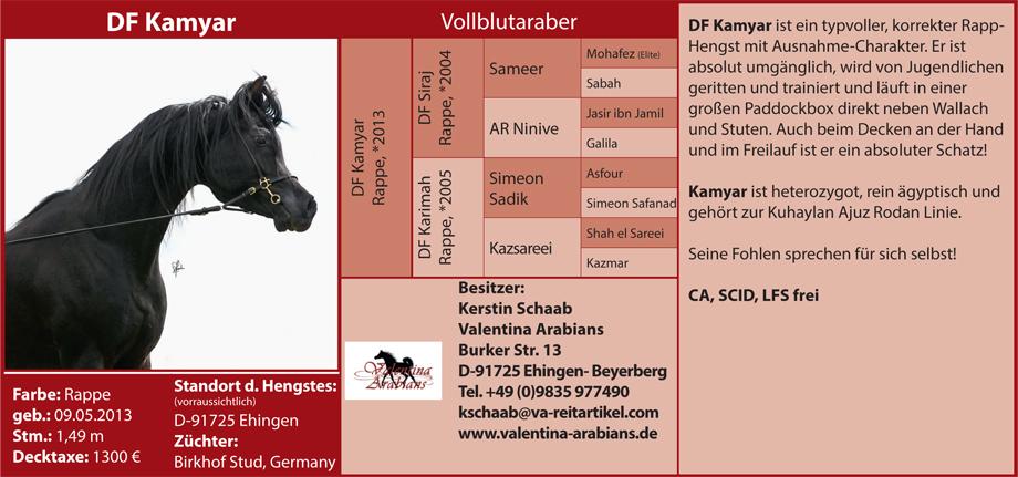 Valentina Arabians Kerstin Schaab