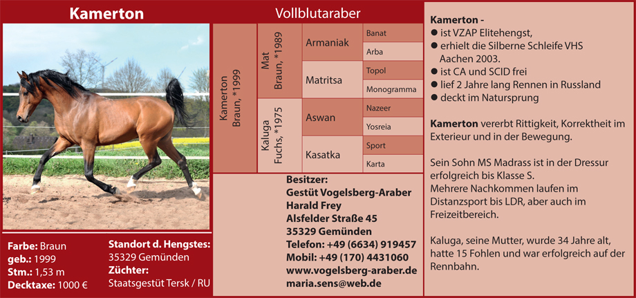 Gestüt Vogelsberg-Araber Maria Sens