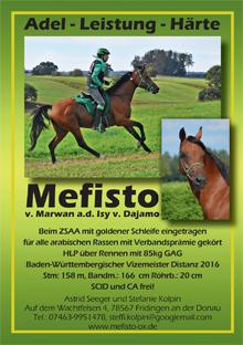 Astrid Seeger - Mefisto